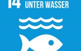 """Videoprojekt zum UN-Nachhaltigkeitsziel 14:  """"Leben unter Wasser"""""""